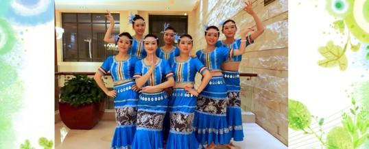 2013年会节目:《傣族小阿妹》